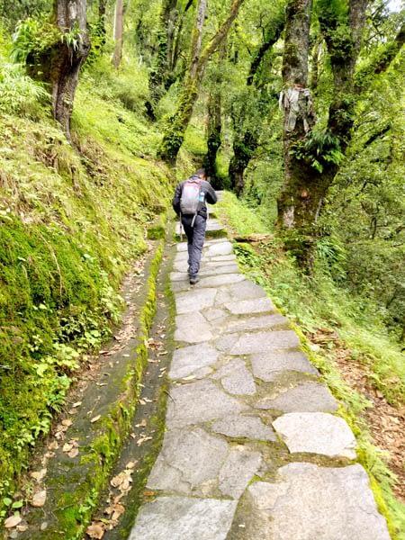 Tango Hike