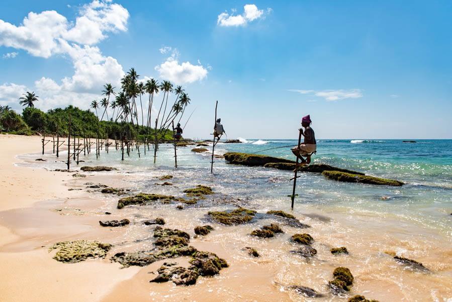 Stilt fishermen of Sri Lanka
