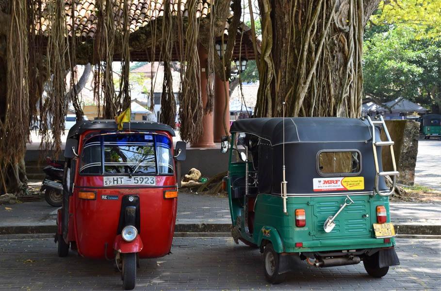 Tuk-Tuks in Sri Lanka